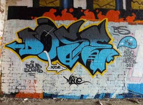 DSCF8501