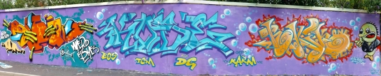 DSCF2129 Stitcha