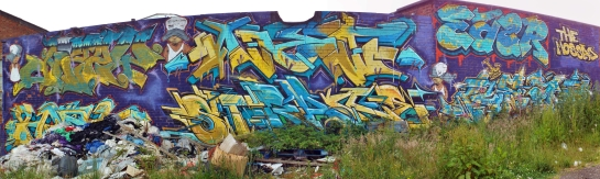 DSCF3825 Stitch