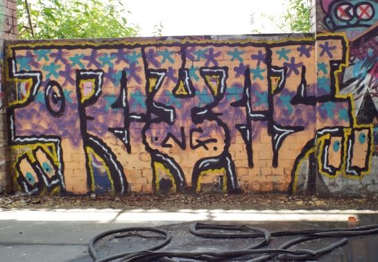 DSCF5446
