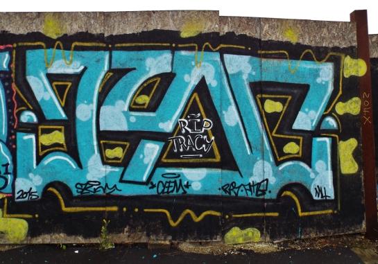 DSCF2034